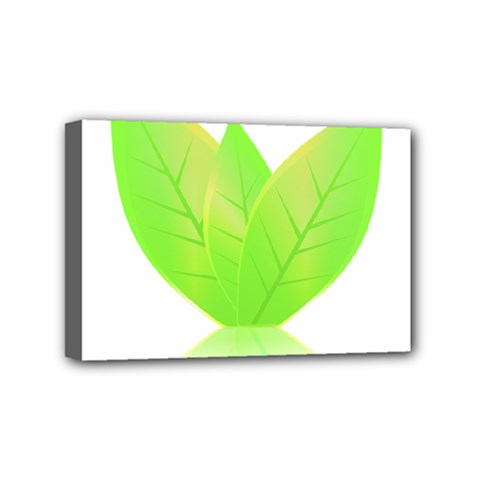Leaves Green Nature Reflection Mini Canvas 6  X 4