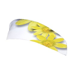 Flowers Spring Yellow Spring Onion Stretchable Headband