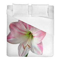 Flower Blossom Bloom Amaryllis Duvet Cover (full/ Double Size)