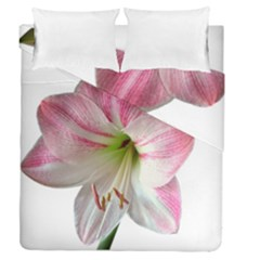 Flower Blossom Bloom Amaryllis Duvet Cover Double Side (queen Size)