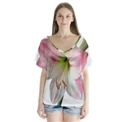 Flower Blossom Bloom Amaryllis Flutter Sleeve Top