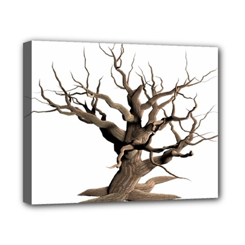 Tree Isolated Dead Plant Weathered Canvas 10  X 8  by Nexatart