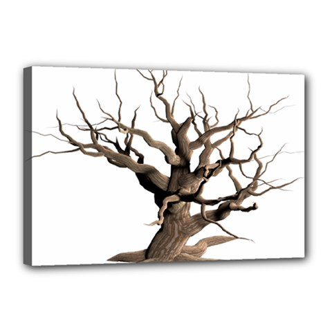 Tree Isolated Dead Plant Weathered Canvas 18  X 12  by Nexatart