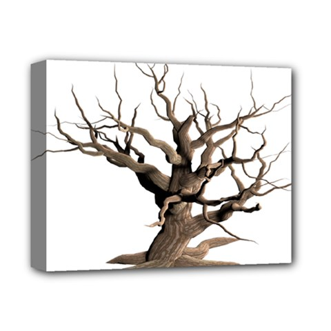 Tree Isolated Dead Plant Weathered Deluxe Canvas 14  X 11  by Nexatart