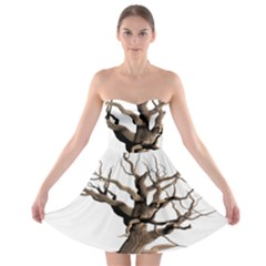Tree Isolated Dead Plant Weathered Strapless Bra Top Dress