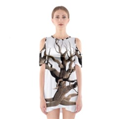 Tree Isolated Dead Plant Weathered Shoulder Cutout One Piece
