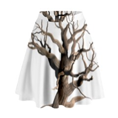 Tree Isolated Dead Plant Weathered High Waist Skirt by Nexatart