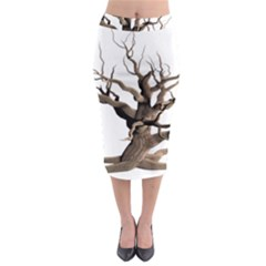 Tree Isolated Dead Plant Weathered Midi Pencil Skirt by Nexatart