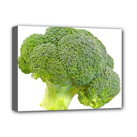 Broccoli Bunch Floret Fresh Food Deluxe Canvas 16  X 12
