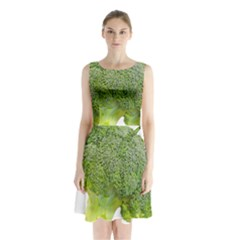 Broccoli Bunch Floret Fresh Food Sleeveless Waist Tie Chiffon Dress