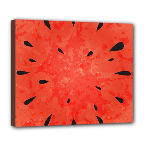 Summer Watermelon Design Deluxe Canvas 24  X 20   by TastefulDesigns