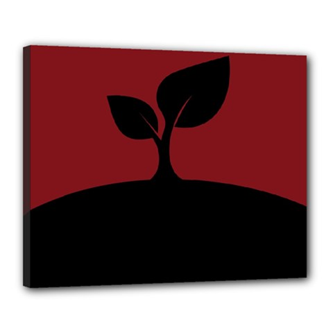 Plant Last Plant Red Nature Last Canvas 20  X 16  by Nexatart