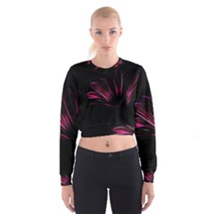 Pattern Design Abstract Background Cropped Sweatshirt