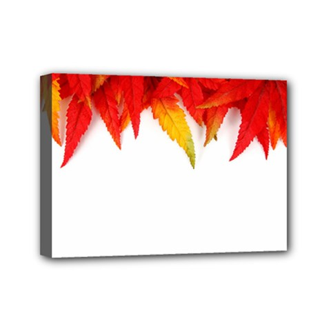 Abstract Autumn Background Bright Mini Canvas 7  X 5