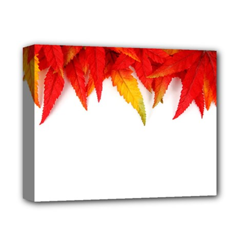 Abstract Autumn Background Bright Deluxe Canvas 14  X 11  by Nexatart