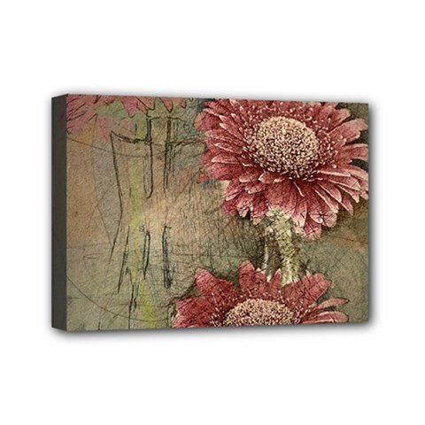 Flowers Plant Red Drawing Art Mini Canvas 7  X 5