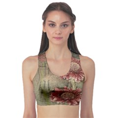 Flowers Plant Red Drawing Art Sports Bra
