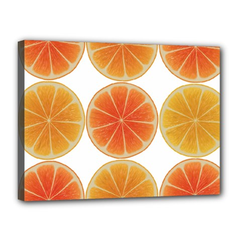 Orange Discs Orange Slices Fruit Canvas 16  X 12  by Nexatart