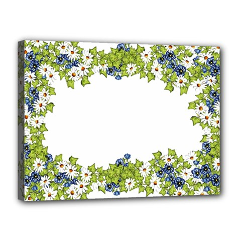 Birthday Card Flowers Daisies Ivy Canvas 16  X 12  by Nexatart