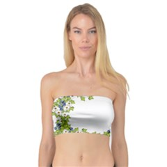 Birthday Card Flowers Daisies Ivy Bandeau Top