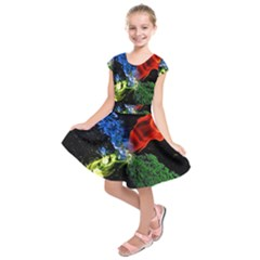 Perfect Amoled Screens Fire Water Leaf Sun Kids  Short Sleeve Dress