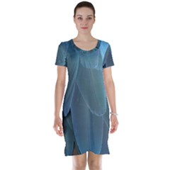 Feather Plumage Blue Parrot Short Sleeve Nightdress