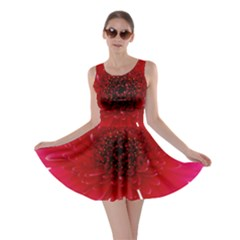 Flower Isolated Transparent Blossom Skater Dress