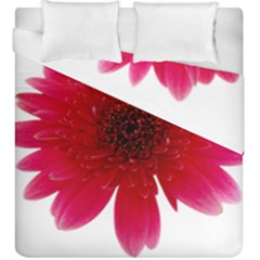 Flower Isolated Transparent Blossom Duvet Cover Double Side (king Size)