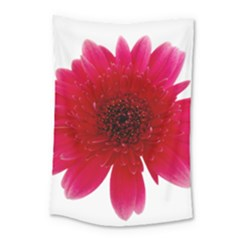Flower Isolated Transparent Blossom Small Tapestry by Nexatart