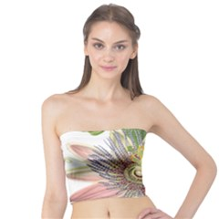 Passion Flower Flower Plant Blossom Tube Top