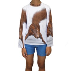 Squirrel Wild Animal Animal World Kids  Long Sleeve Swimwear