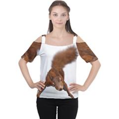 Squirrel Wild Animal Animal World Women s Cutout Shoulder Tee