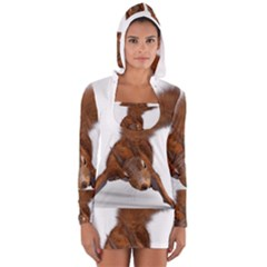 Squirrel Wild Animal Animal World Women s Long Sleeve Hooded T Shirt