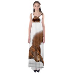 Squirrel Wild Animal Animal World Empire Waist Maxi Dress