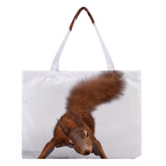 Squirrel Wild Animal Animal World Medium Tote Bag