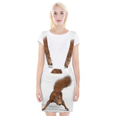Squirrel Wild Animal Animal World Braces Suspender Skirt by Nexatart