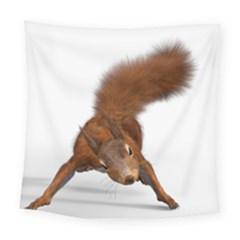 Squirrel Wild Animal Animal World Square Tapestry (large)