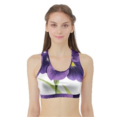 Lily Flower Plant Blossom Bloom Sports Bra With Border