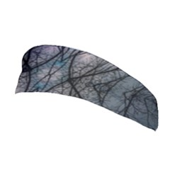 Storm Nature Clouds Landscape Tree Stretchable Headband