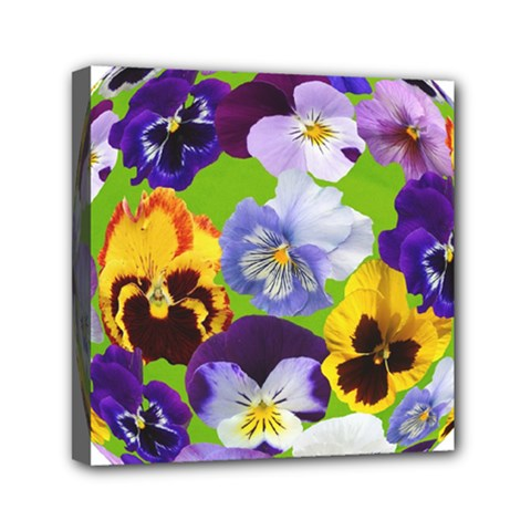 Spring Pansy Blossom Bloom Plant Mini Canvas 6  X 6  by Nexatart