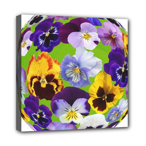 Spring Pansy Blossom Bloom Plant Mini Canvas 8  X 8  by Nexatart