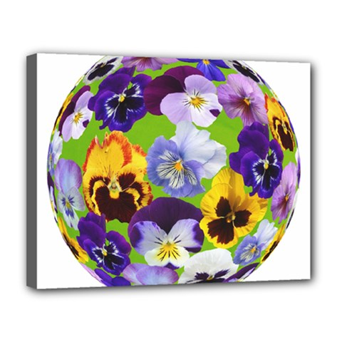Spring Pansy Blossom Bloom Plant Canvas 14  X 11  by Nexatart