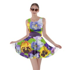 Spring Pansy Blossom Bloom Plant Skater Dress
