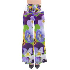 Spring Pansy Blossom Bloom Plant Pants