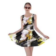 Canvas Acrylic Digital Design Skater Dress