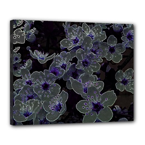 Glowing Flowers In The Dark B Canvas 20  X 16  by MoreColorsinLife