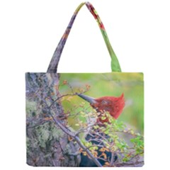 Woodpecker At Forest Pecking Tree, Patagonia, Argentina Mini Tote Bag by dflcprints