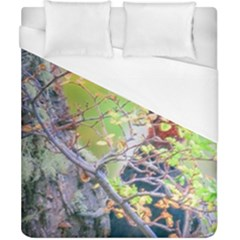 Woodpecker At Forest Pecking Tree, Patagonia, Argentina Duvet Cover (california King Size) by dflcprints