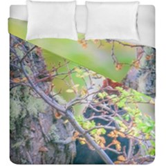 Woodpecker At Forest Pecking Tree, Patagonia, Argentina Duvet Cover Double Side (king Size) by dflcprints