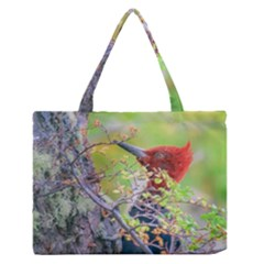 Woodpecker At Forest Pecking Tree, Patagonia, Argentina Medium Zipper Tote Bag by dflcprints